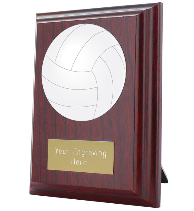 "Gaelic Football Plaque Award 10cm (4"")"