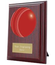 "Cricket Plaque Award 10cm (4"")"