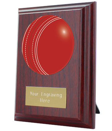 "Cricket Plaque Award 10cm (4"")"
