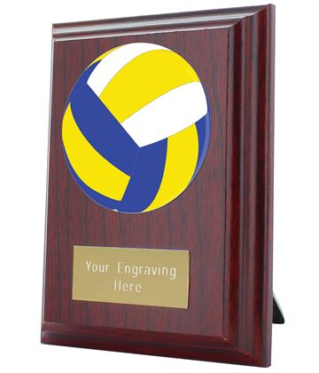 "Volleyball Plaque Award 10cm (4"")"