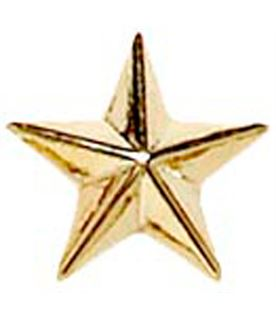 Gold Star Lapel Badge 8mm