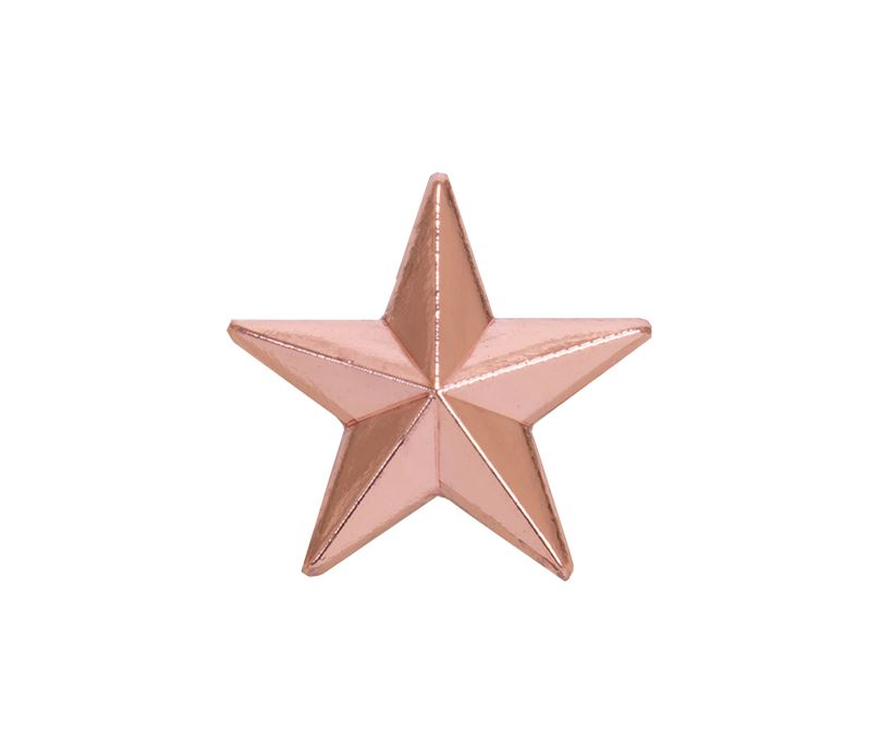 Bronze Star Lapel Badge 12mm