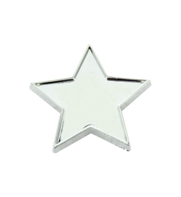 Silver Star Lapel Badge 20mm