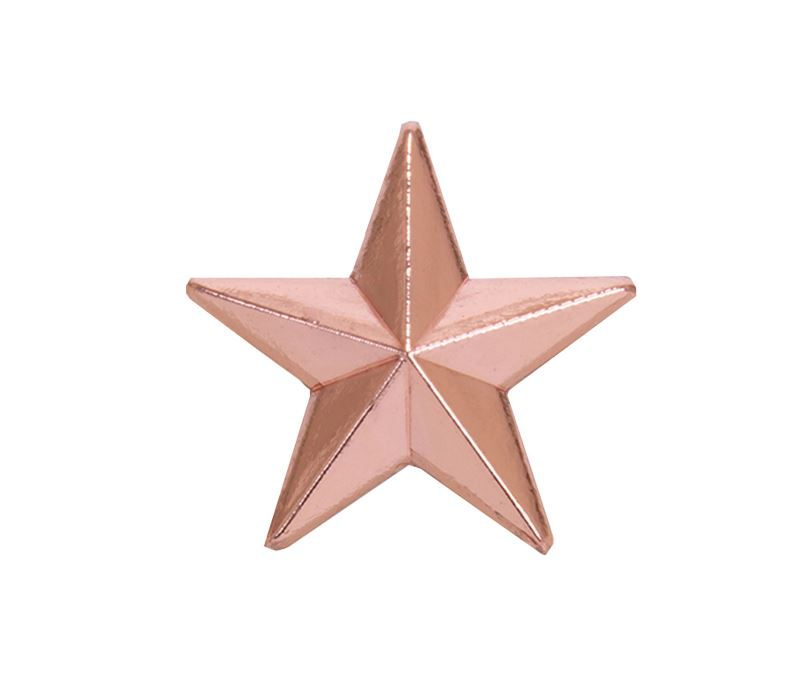 Bronze Star Lapel Badge 8mm