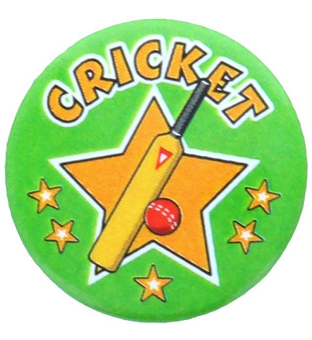 """Cricket Star Pin Badge 25mm (1"""")"""