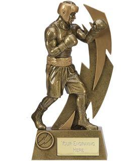 "Gold Resin Flash Boxing Trophy 17cm (6.75"")"