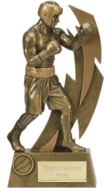 "Gold Resin Flash Boxing Trophy 22cm (8.75"")"