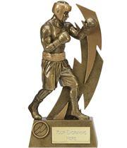 "Gold Resin Flash Boxing Trophy 22cm (8.75"")"