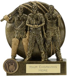 "Team Spirit Cricket Trophy 14cm (5.5"")"
