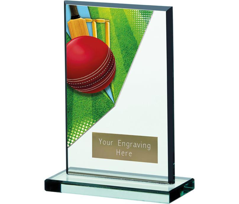 "Cricket Acrylic Trophy 15cm (6"")"
