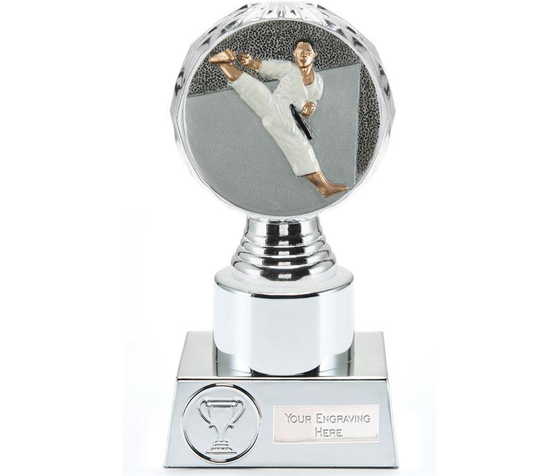 "Karate Trophy Silver Hemisphere16.5cm (6.5"")"