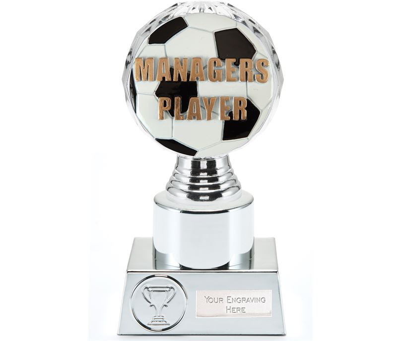 """Managers Player Trophy Silver Hemisphere 16.5cm (6.5"""")"""