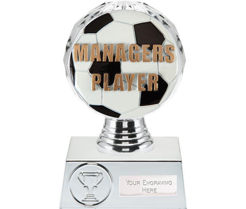 """Managers Player Trophy Silver Hemisphere 13.5cm (5.25"""")"""