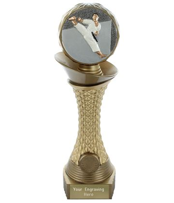 "Karate Trophy Heavyweight Hemisphere Tower Gold & Bronze 25.5cm (10"")"