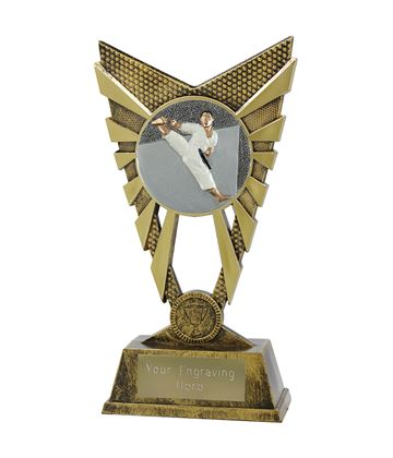 "Valiant Karate Trophy Gold 23cm (9"")"
