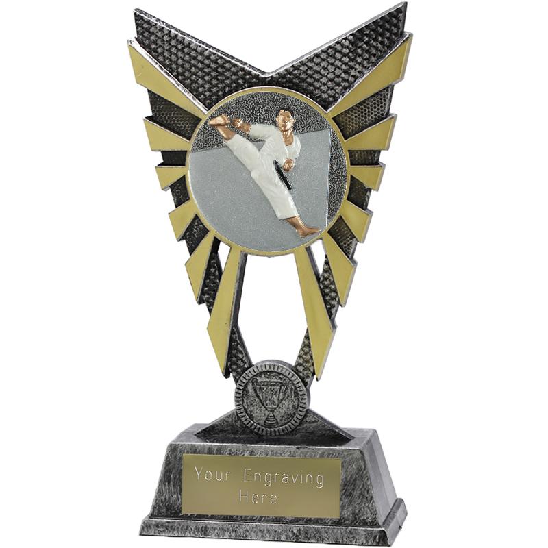 "Valiant Karate Heavyweight Trophy Silver 23cm (9"")"