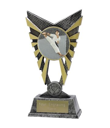 "Valiant Karate Trophy Silver 23cm (9"")"