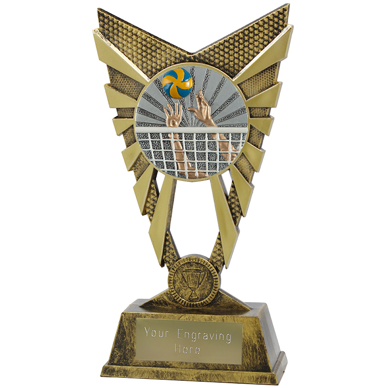 "Valiant Volleyball Heavyweight Trophy Gold 23cm (9"")"
