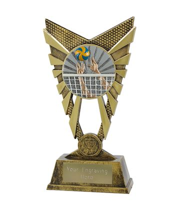 """Valiant Volleyball Trophy Gold 23cm (9"""")"""