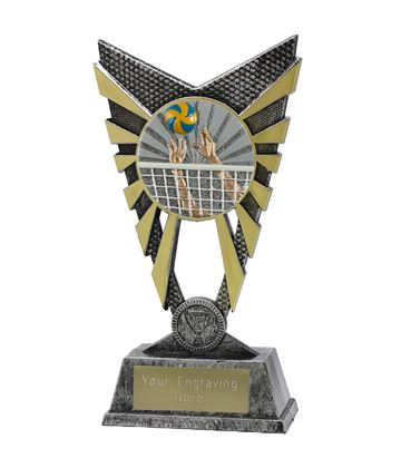 """Valiant Volleyball Trophy Silver 23cm (9"""")"""