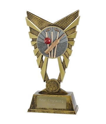 "Valiant Cricket Trophy Gold 23cm (9"")"