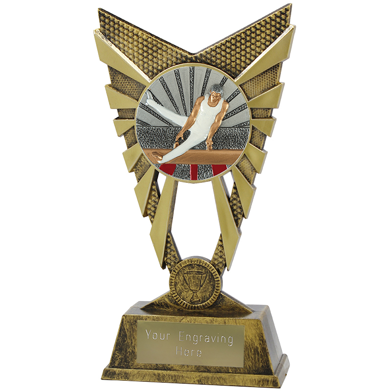"Valiant Male Gymnastics Heavyweight Trophy Gold 23cm (9"")"