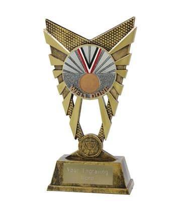 "Valiant Well Done Trophy Gold 23cm (9"")"