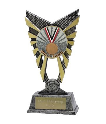 "Valiant Well Done Trophy Silver 23cm (9"")"