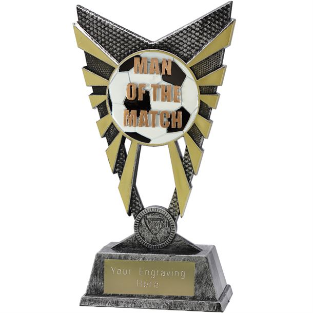 "Valiant Man of the Match Trophy Silver 23cm (9"")"