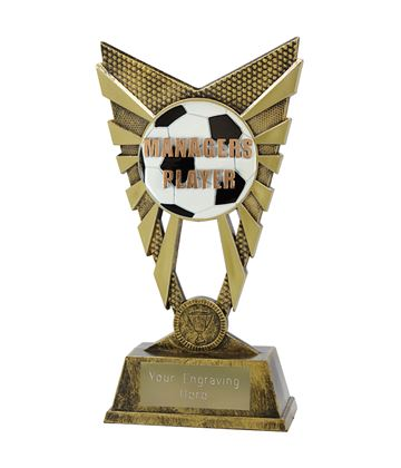 "Valiant Managers Player Trophy Gold 23cm (9"")"