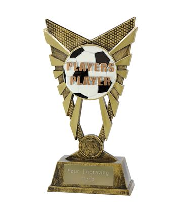 "Valiant Players Player Trophy Gold 23cm (9"")"