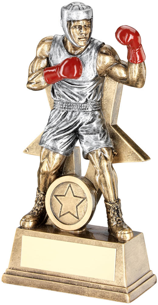 "Male Boxing Figure Trophy Antique Silver & Gold 15cm (6"")"