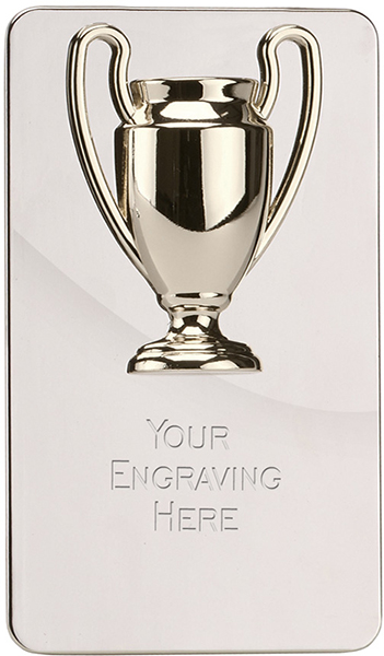 """Silver Metal Cast Cup on High Polished Metal Plaque 15cm (6"""")"""