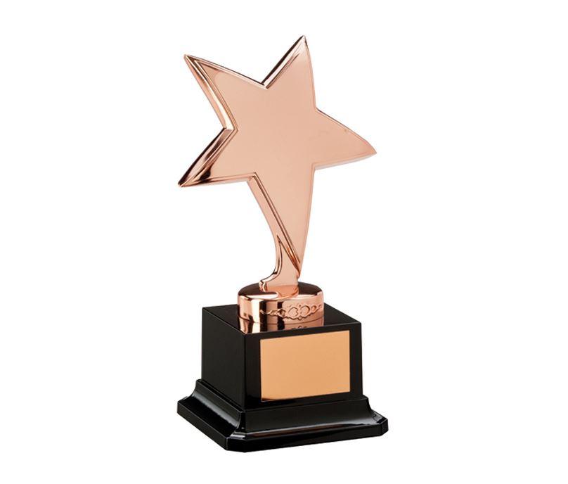 "Bronze Star Challenger Award 15.5cm (6"")"