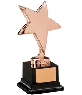 "Bronze Star Challenger Award 16.5cm (6.5"")"