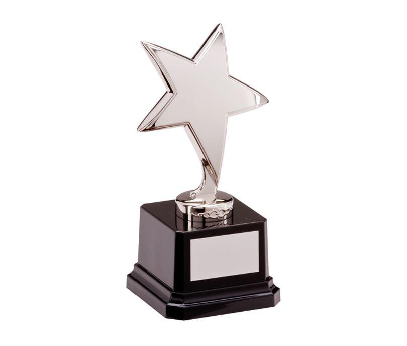 "Silver Star Challenger Award 15.5cm (6"")"