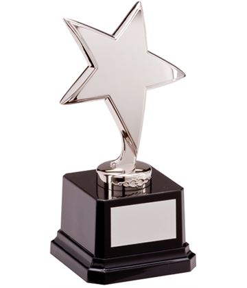 "Silver Star Challenger Award 16.5cm (6.5"")"