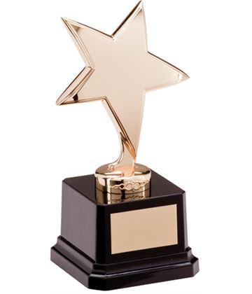 "Gold Star Challenger Award 15.5cm (6"")"