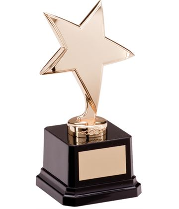 "Gold Star Challenger Award 16.5cm (6.5"")"