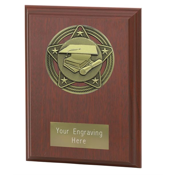 "Academic Plaque Award by Infinity Stars 12.5cm (5"")"