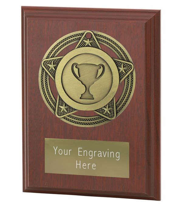 "Multisport Plaque Award by Infinity Stars 10cm (4"")"