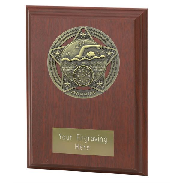 "Swimming Plaque Award by Infinity Stars 12.5cm (5"")"