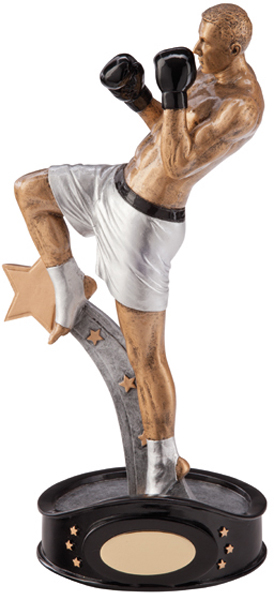 "Gold & Silver Resin Ultimate Kickboxer Figure Trophy 24.5cm (9.5"")"