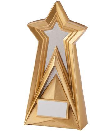 """Gold & Silver Destiny Star Plaque Award 19cm (7.5"""")"""