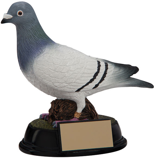 "3D Resin Elite Pigeon Racing Trophy 16cm (6.25"")"