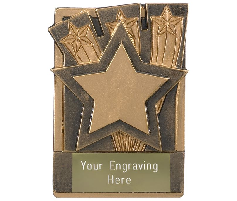 "Star Fridge Magnet Award 8cm (3.25"")"