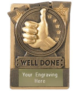 "Well Done Fridge Magnet Award 8cm (3.25"")"