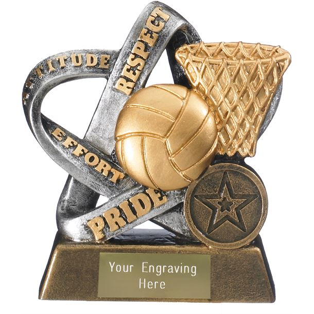 "Fair Play Netball Trophy Silver & Gold 11cm (4.25"")"