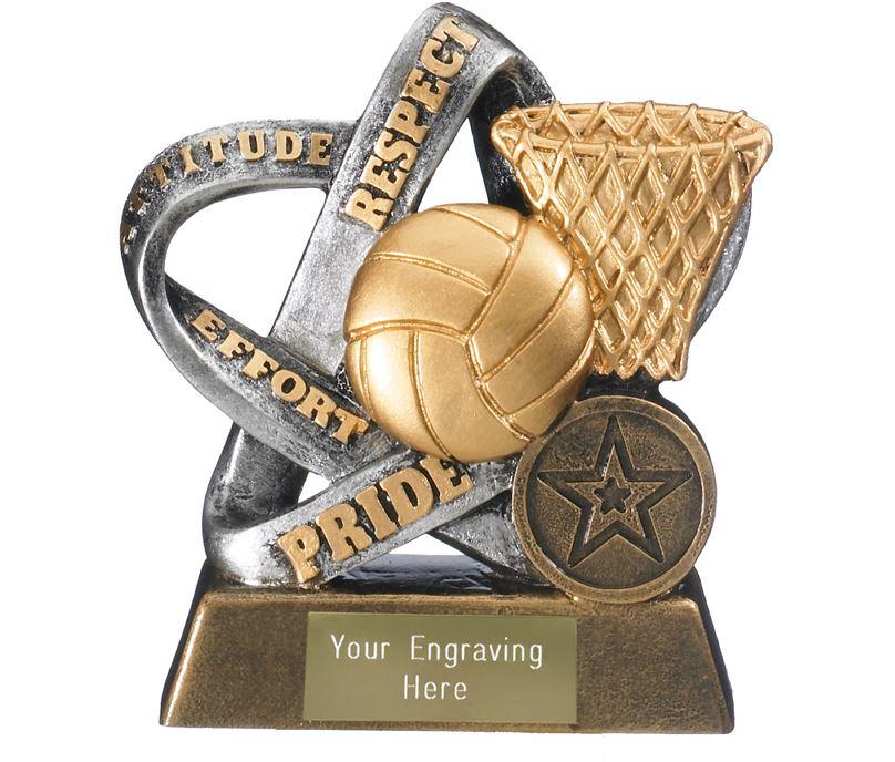 "Fair Play Netball Trophy Silver & Gold 14cm (5.5"")"
