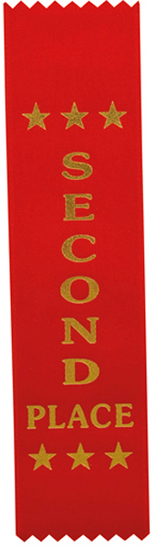 "2nd Place Award Ribbon Red 20cm x 5cm (8"" x 2"")"